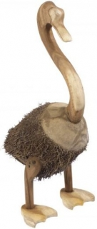 Ancient Mariner Root Swan