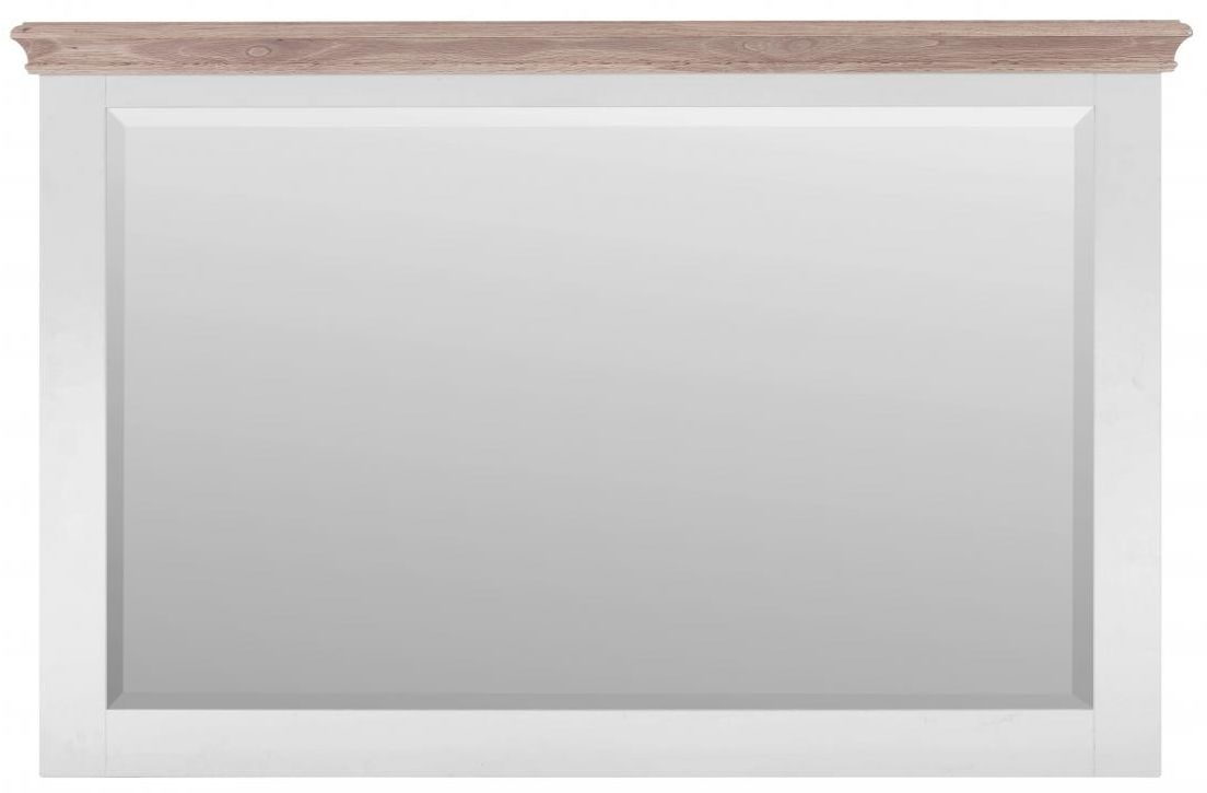 Rosa Painted Rectangular Large Mirror