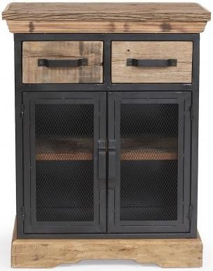The Cosgrove Collection 2 Door Cabinet
