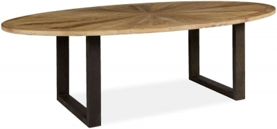 Boston Reclaimed Wood 254cm Oval Dining Table with Iron Legs