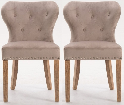 Indus Valley Arlo Taupe Velvet Fabric Dining Chair (Pair)