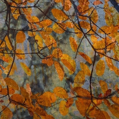 RV Astley Autumn Leaves Printed Image - 630104003