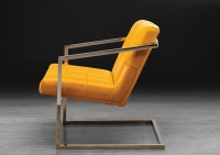 Stone International Dafne Leather Occasional Chair