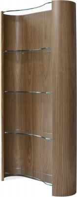 Tom Schneider Swirl Bookcase