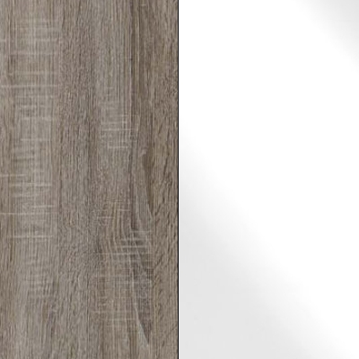 Dark Rustic Oak Carcase with White Glass Front 737