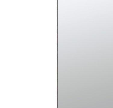 Alpine White Carcase with Mirror Front AP950