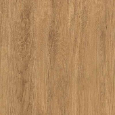 ZA460 : Natural Royal Oak with Carcase Front