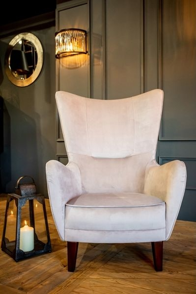 Cullinary Concept Romeo Silver Grey Velvet Armchair with Black Wood Legs