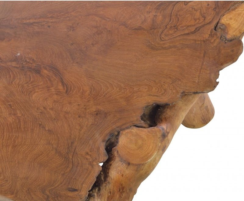 Ancient Mariner Tree Root Coffee Table