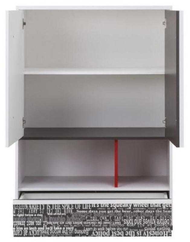 Harry White and Graphite 2 Door Cabinet